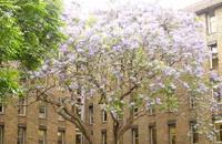 南威尔士大学_英国南威尔士大学_University of South Wales-中英网UKER.net